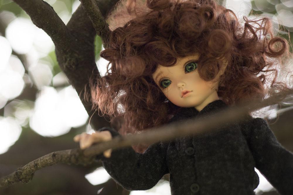 KID-Irene-tree-branch2